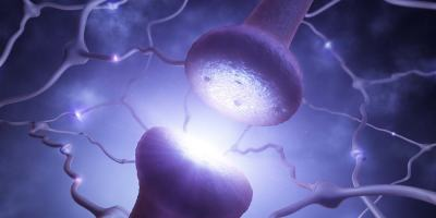 close up of brain synapse